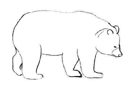 Dessins d - Comment dessiner un ours ...